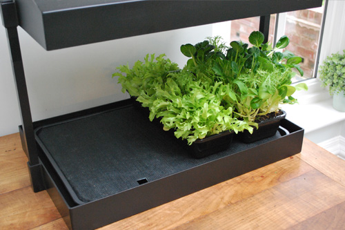 Grow Light Garden Insatsbevatt