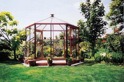 Rött Cardinal i naturskön miljö, från Classicum växthus