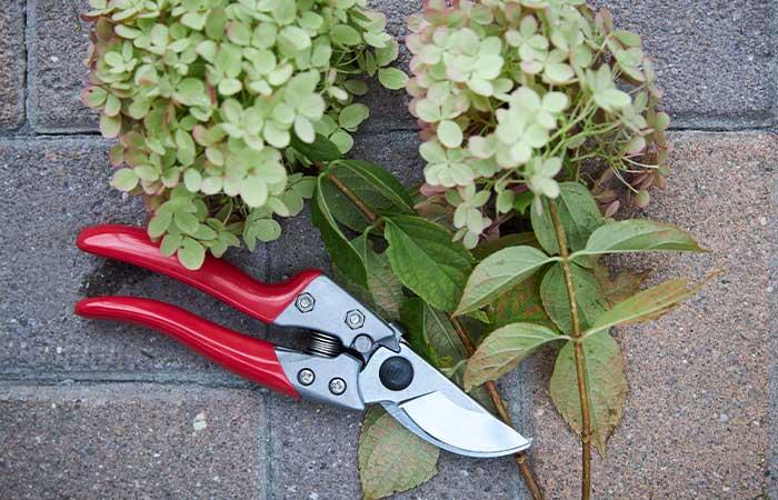 Med rätt redskap och verktyg blir odlingen enklare och roligare i ditt växthus